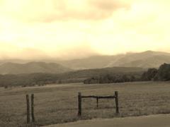 Smoky Mountain Field (Sepia) Stock Illustration