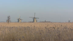 Mill network at Kinderdijk, The Netherlands + reeds zoom in windmills, winter Stock Footage