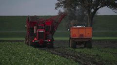 Sugar beet harvest 1 Stock Footage