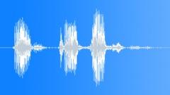Armeija Radio Message: paikallaan. Äänitehoste