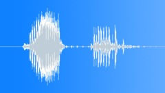 Radio Code / International Alphabet: Papa - Military, Male, V2 Sound Effect
