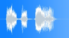 Military Radio Message: Hold Your Fire! Male Voice Signal, V1 Sound Effect