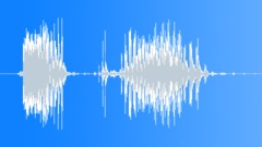 Radio Code / International Alphabet: Echo - Military, Male, V1 Sound Effect