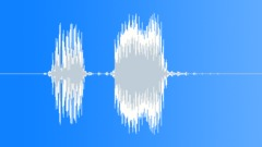 Radio Code / International Alphabet: Papa - Military, Male, V3 Sound Effect