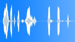 Police Radio Message, To All Officers In The Area 10-23, Voice Signal, Male Sound Effect