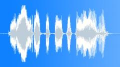 Poliisi Radio Viesti: Kaikki neuvonantajan Area! Äänitehoste