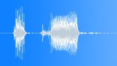 Police / Military Radio Message: Repeat! Voice Signal, Male, V1 - sound effect