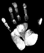 Hand Stock Illustration
