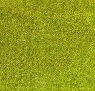Green grass background . Stock Photos