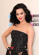 American Music Awards 2013 - stock photo
