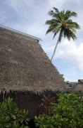 traditional polynesian houses in aitutaki lagoon cook islands - stock photo
