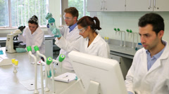 Stock Video Footage of Team of focused young science students working together in the lab