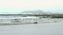 Waves rolling in on the beach - stock footage
