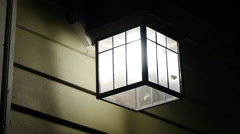 Lamp with Moths - stock footage