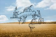 Stock Illustration of Working ants over countryside