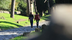 The Appian Way, Rome 18 Stock Footage
