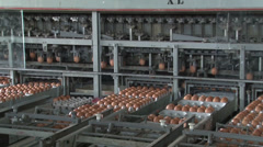 Chicken Egg grading and packaging NTSC 10 Stock Footage