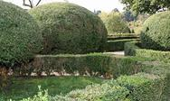 Stock Photo of very nice italian garden with hedges cut very accurately in the park a beauti