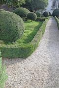 Stock Photo of italian garden with hedges cut very accurately in the park