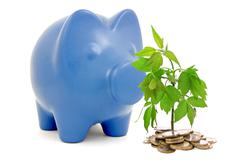 piggy bank and money tree - stock photo