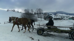 Two horses harnessed to a cart and driven by the old man. Carpathians, Ukraine. Stock Footage