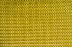 honeycomb pattern - stock photo