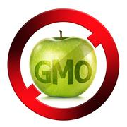 green apple isolated on white anti gmo sign on white background - stock illustration