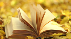 Book's page turning by wind on a background of yellow fallen leaves - stock footage