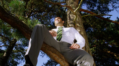 Businessman sitting in a tree looking into the setting sun. Stock Footage