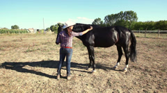 Young Woman with Black Stallion Horse - stock footage