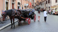 Horse and traditional carriage in Rome Footage