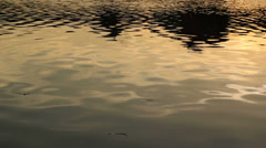 Water Surface background Stock Footage