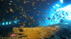 Scuba diving inside shipwreck in Manokwari Harbor Stock Footage