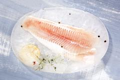 Pangasius fillet. Stock Photos