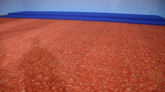 Great artistic carpet with shadow Stock Footage