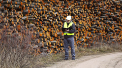 Forest worker near stacks of logs episode 2 Stock Footage