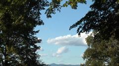 Himmel mit blick durch bäume und landschaft Stock Footage