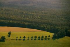 Felder und wald Stock Photos