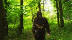 Sasquatch (Big Foot) walking through woods Stock Footage