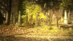 Christian Catholic Cemetery Europe 14 styized Stock Footage
