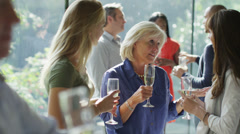 Diverse group of friends chatting & drinking wine at party in contemporary home - stock footage