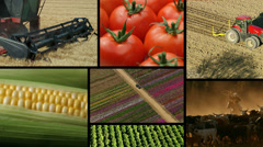 Montage of agriculture, farming and food Stock Footage