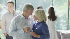 Portrait of happy mature couple drinking wine at a social event - stock footage