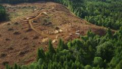 Logging operation in Oregon forest, aerial shot Stock Footage