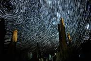Stock Photo of Mono Lake Tufa Towers and Startrails