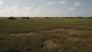 Stock Video Footage of Wide aerial shot flying over marshland in the Everglades