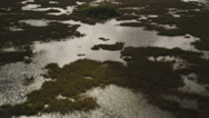 Stock Video Footage of Wide birdseye aerial shot of marshland in the Everglades