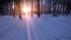 Intimidating man runs towards camera in beautiful snowy forest scene with sun Stock Footage