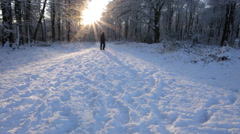 Stock Video Footage of Man takes a walk through beautiful snowy forest scene with sun setting behind
