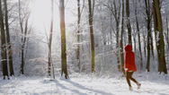 Stock Video Footage of Little Red Riding Hood - Young girl in red coat stands out against a snowy white